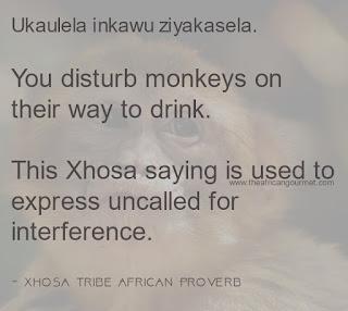 You disturb monkeys on their way to drink.