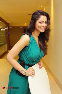 Actress Shilpi Sharma Pictures in Green Dress at D'sire Exhibition Launch  0014.jpg