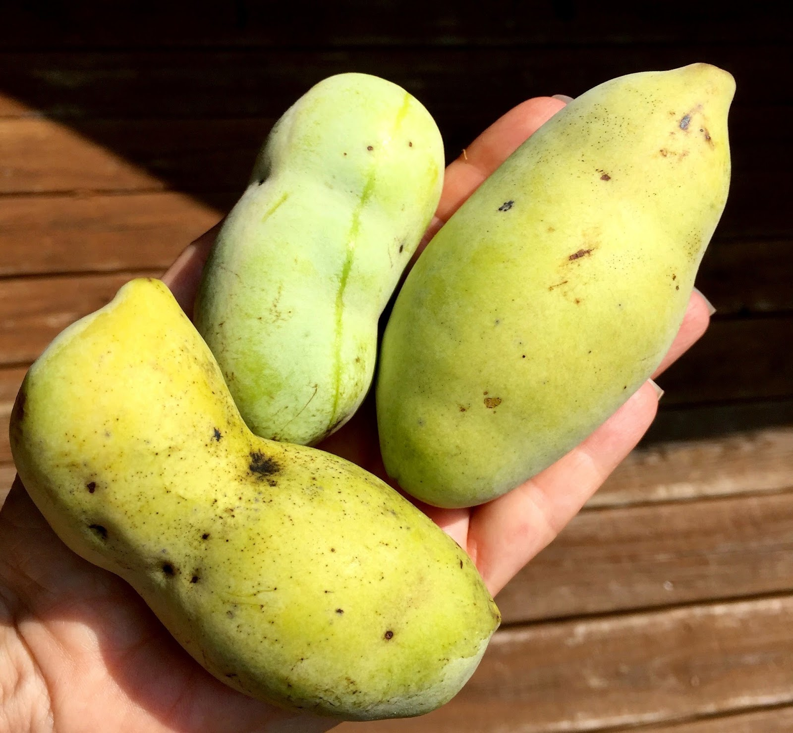 how to eat paw paw fruit