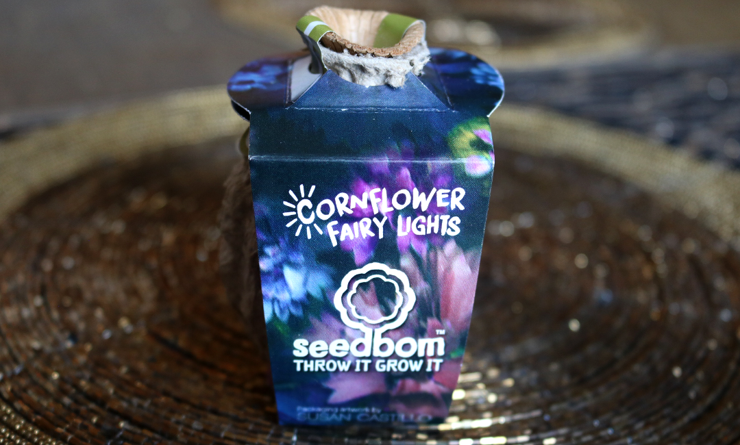 Seedbom Cornflower Fairy Lights
