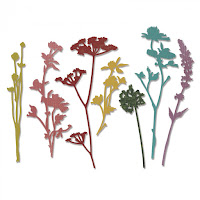 http://www.scrappasja.pl/p12184,661190-sizzix-thinlits-die-set-7pk-wildflowers.html
