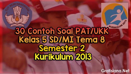 Download Soal PAT/UKK Kelas 5 SD/MI Tema 8 Semester 2