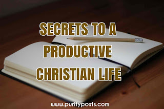 how to become productive in the Kingdom of God