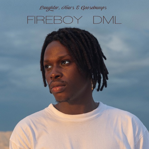"[SB-ALBUM] Fireboy DML — ""Laughter, Tears & Goosebumps"""