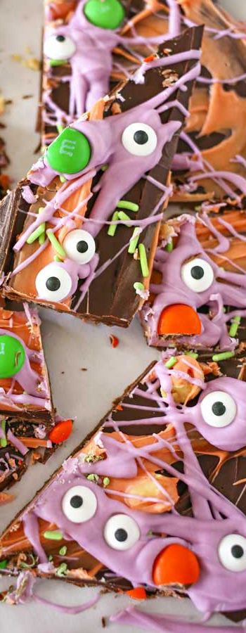 Monster Bark via Lil'Luna Blog