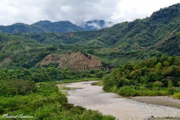 Confluenza del rio Perené