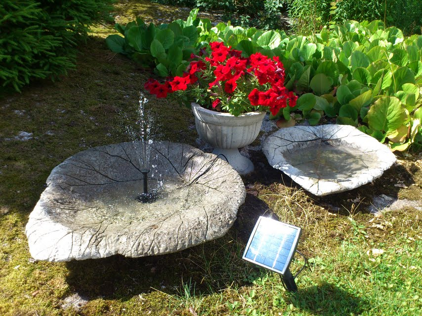 Icke gamla Litholms blogg: Fantastiska sommar! YQ-93