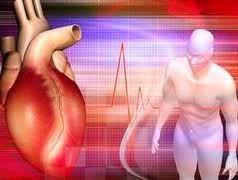 Penyakit Jantung Berdebar