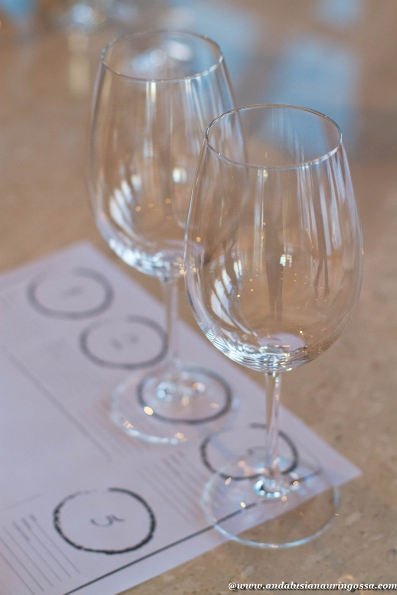 Andalusian auringossa_viinimatkalla Bulgariassa_tasting_Chateau Copsa