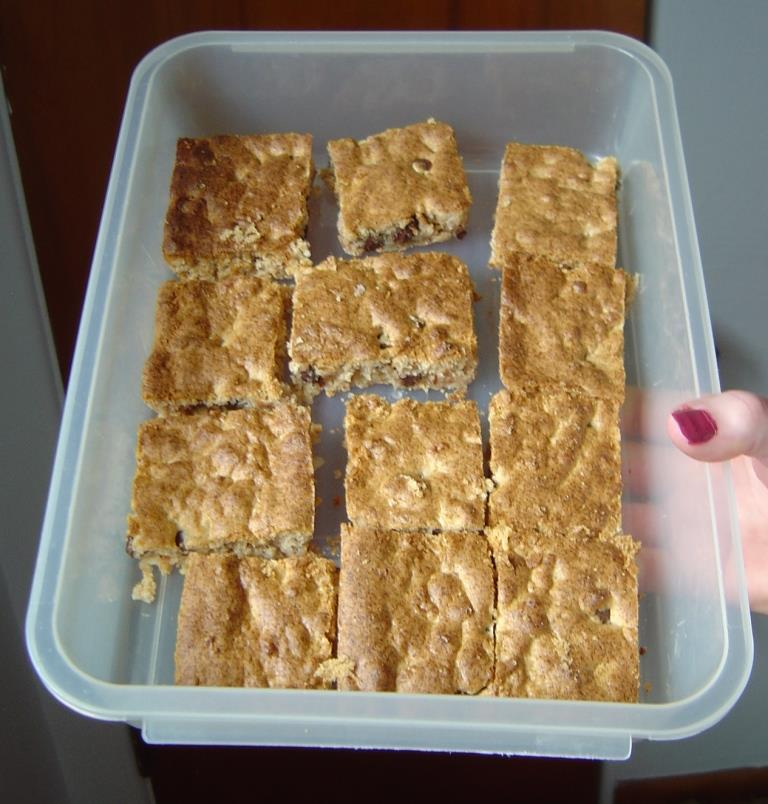 A Container of Chocolate-Coconut Spice Bars Image