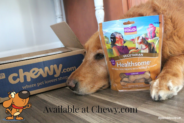 healthy vegetarian dog biscuits available at Chewy