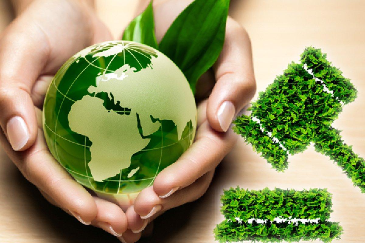 Desarrollo Sustentable Tarea 2 6 Estrategias De Sustentabilidad Para El Manejo De Recursos Naturales