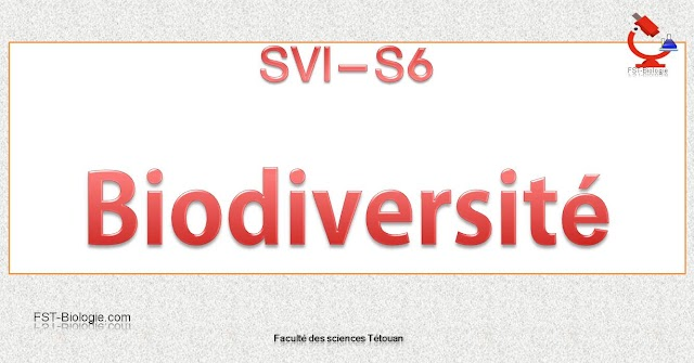 RÉSUMÉ DE BIODIVERSITÉ S6 PDF - SVI / SVT