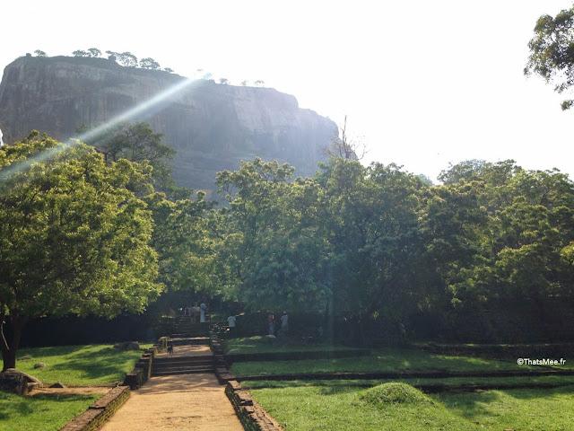 Sri-Lanka Sigiriya le rocher aux lions Simba Roi Lion, Sirigiya ancienne capitale Sri Lanka site UNESCO forteresse roi Kassapa