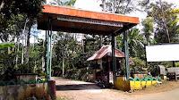 tempat wisata pati kebun kopi jollong