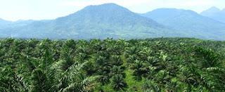 10 mata pencaharian penduduk indonesia