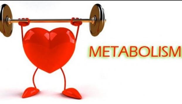 6 Kebiasaan Buruk yang Memperlambat Metabolisme