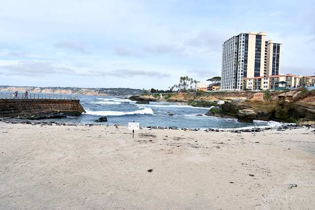 San Diego Family Travel Guide Children's Pool Beach