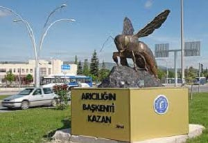 Heykeli Dikilen Bitkilerden Safran