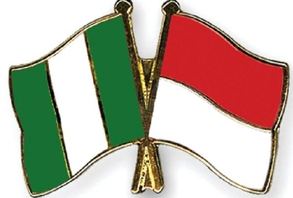 Bentuk Kerja Sama Indonesia dengan Negara Mesir, Zaire, Kenya, Nigeria, Malagasi, dan Afrika Selatan