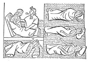 El tabardillo o pintas en el siglo XVI