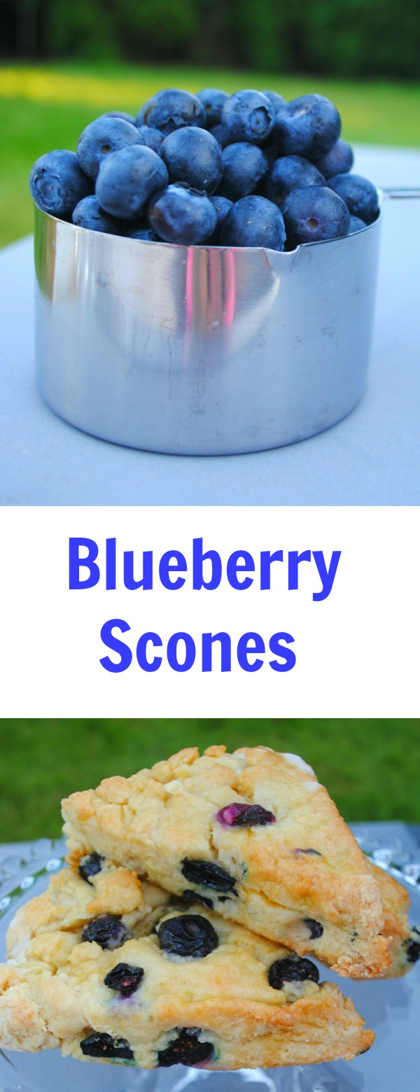 Blueberry - scones- brunch- blueberries