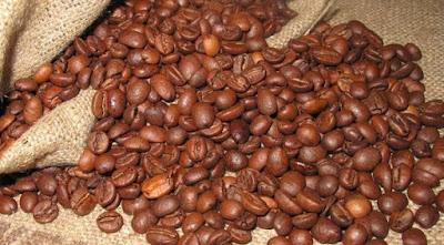 gambar kopi arabica