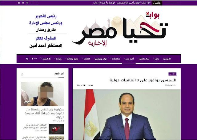 """تصميم موقع """"بوابة تحيا مصر الاخبارية"""""""