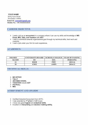 CA Articleship Resume 1