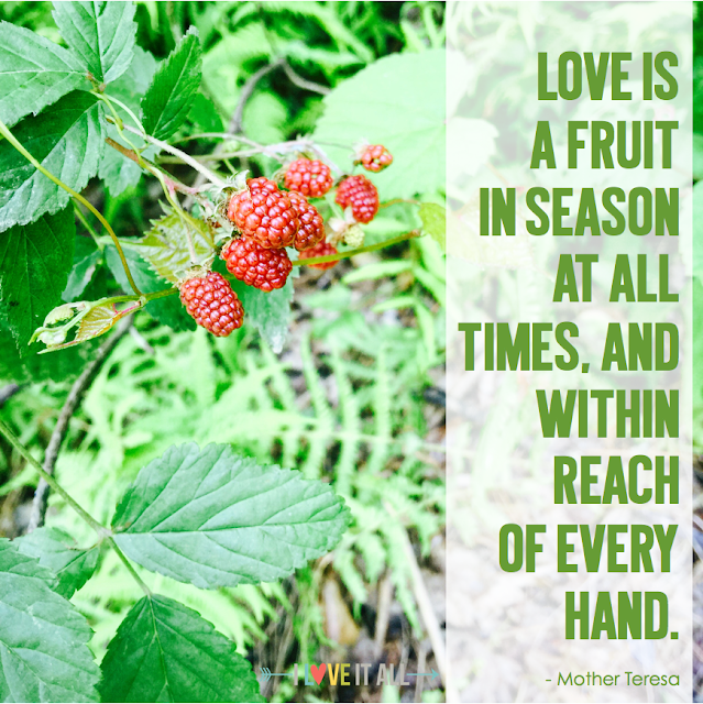 #love #fruit #Mother Teresa # inspirational #motivational #quote #sayings