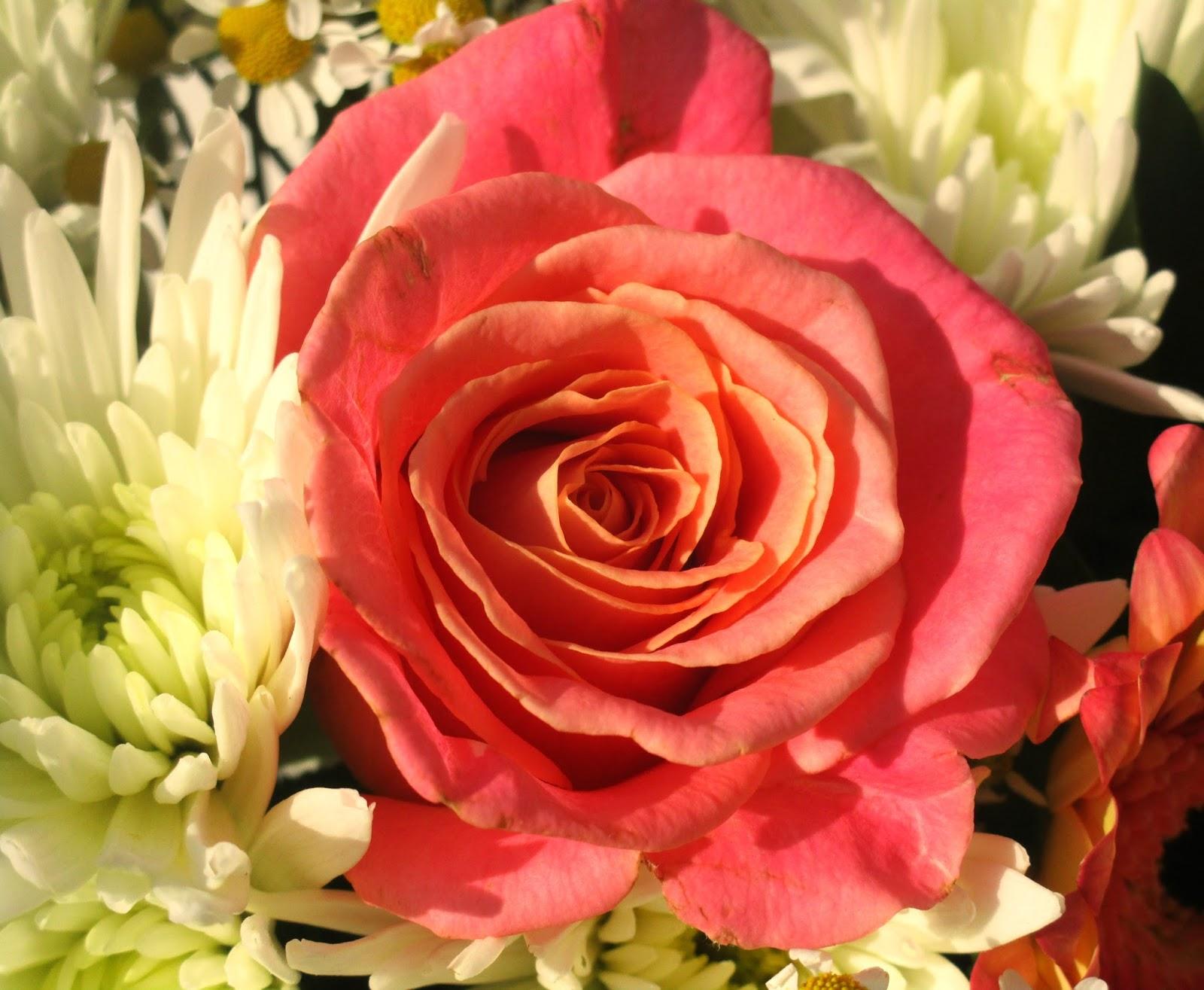 HaySparkle Blossoming Gifts Summer Garden Bouquet 33% off Discount Code