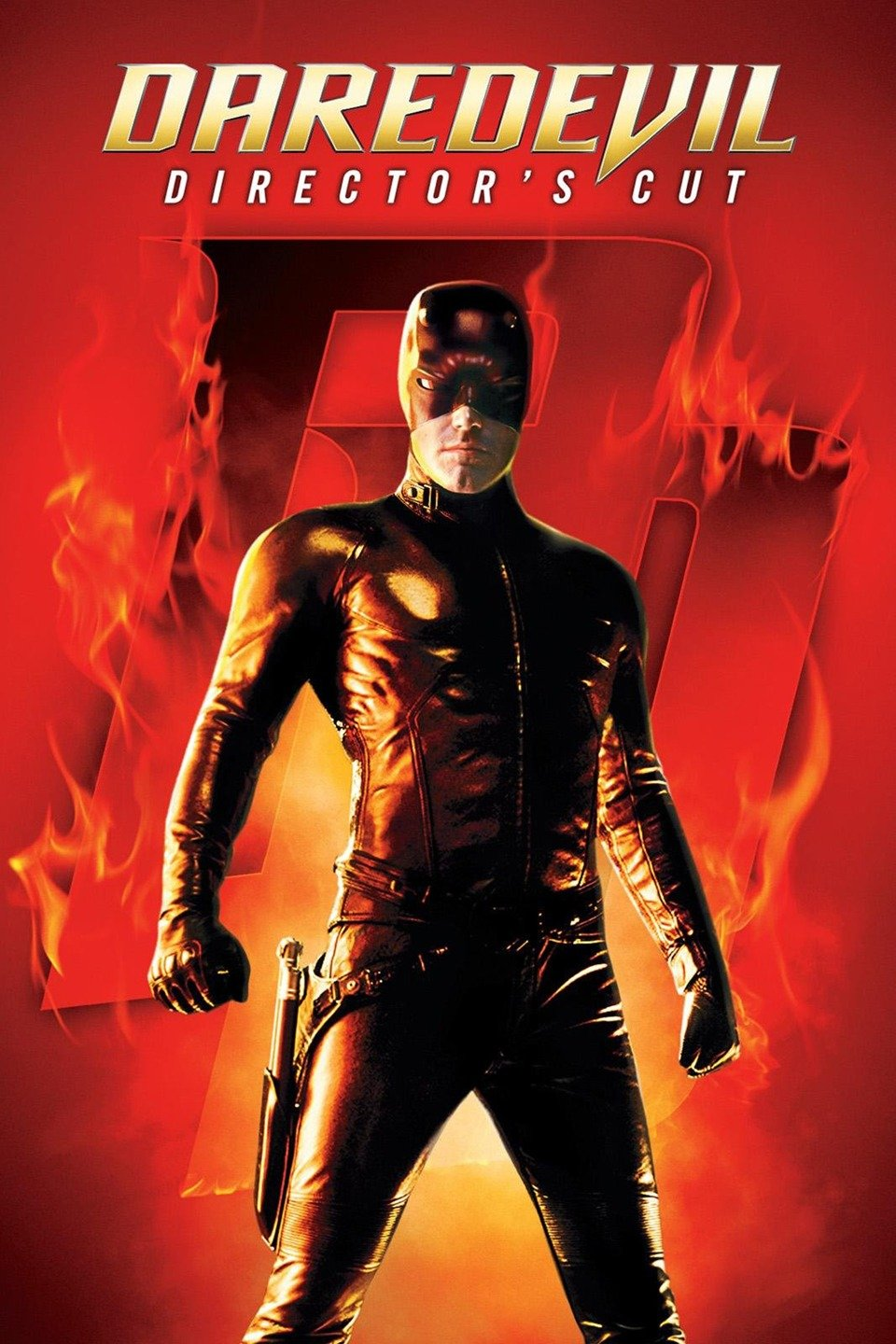 Daredevil (2003) Hindi Dual Audio 450MB BluRay 720p HEVC x265