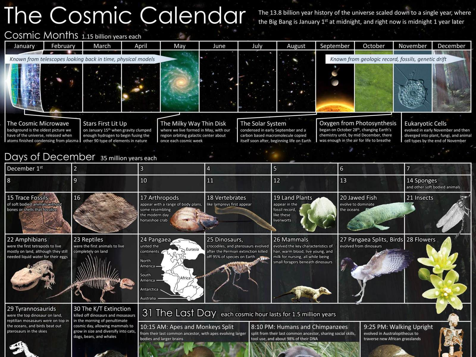 Cosmic Calendar.The Cosmic Calendar Time