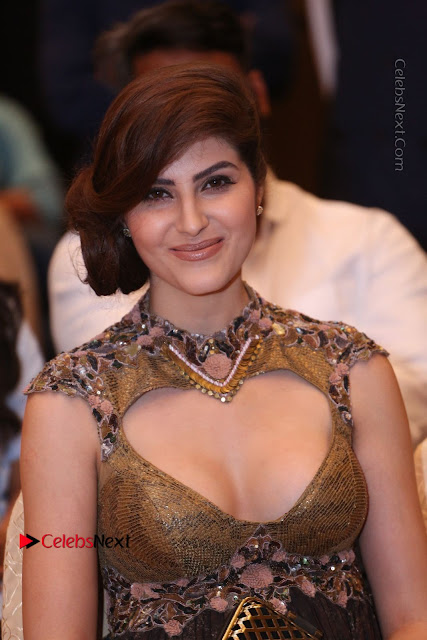 Actress Model Naaz Norouzi Pos in Leg Spit Dress at SIIMA Short Film Awards 2017  0025