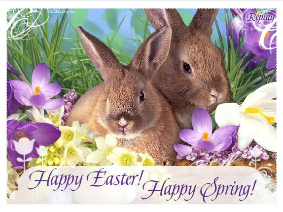 sretan uskrs slika Uskrsne Slike, Čestitke, SMS: Zečevi ti žele sretan Uskrs sretan uskrs slika