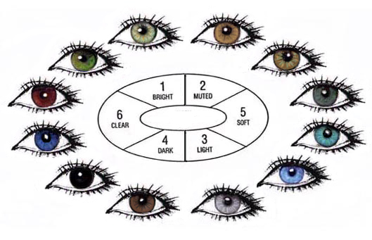 heci's blog: warna mata kita berbeda beda, apa sebabnya