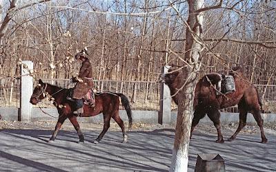 Qinhaï, Golmud, Xizhang road, © L. Gigout, 1990