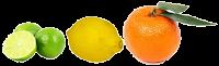(limón, naranja...)