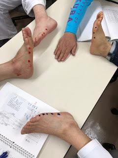 足ツボ(大陽膀胱経)