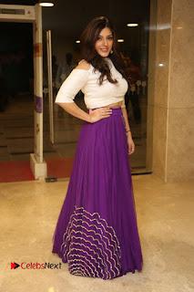 Actress Mehareen Stills in Purple Skirt at Okkadochadu Movie Audio Launch .COM 0129.JPG