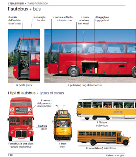 """Лексика на тему """"автобусы"""""""