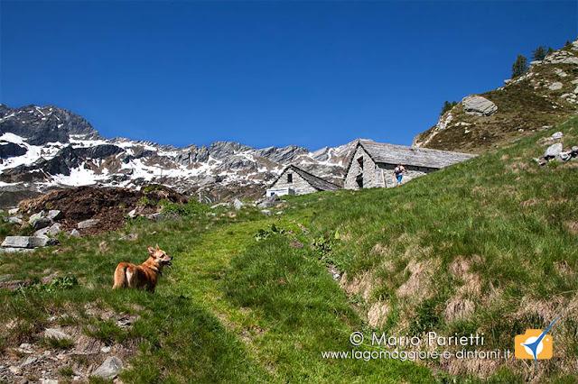 Alpe di Porcaresc