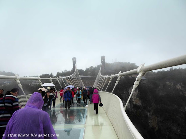 Suspension system, steel frame work and glass bottom of Zhangjiajie Glass bridge