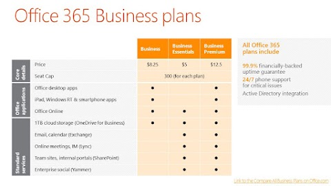 Office 365 business plan
