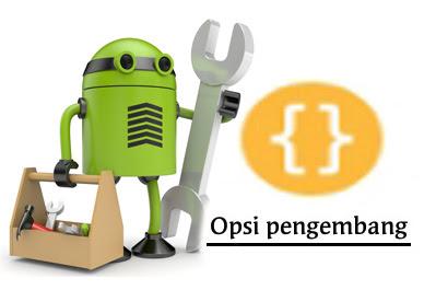 Cara Memunculkan dan Menyembunyikan Opsi Pengembang di Android