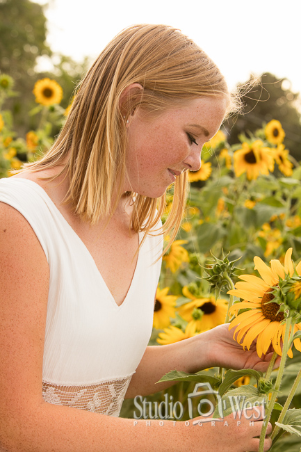 Senior Portrait - Sun Flowers - Summer Senior Pictures - Studio 101 West Photography