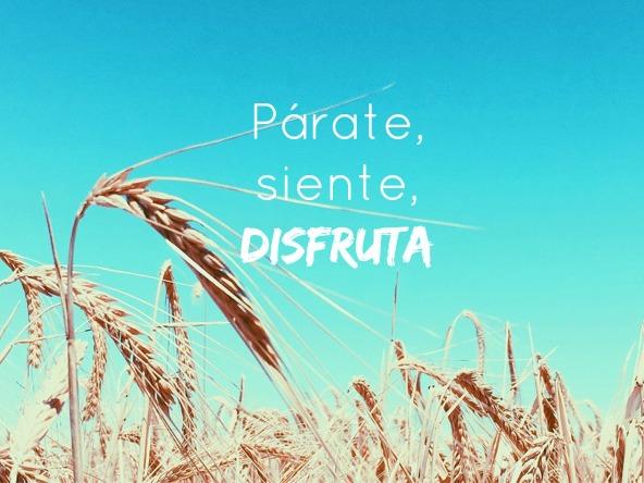 http://mediasytintas.blogspot.com/2016/06/este-mes-parate-siente-disfruta.html