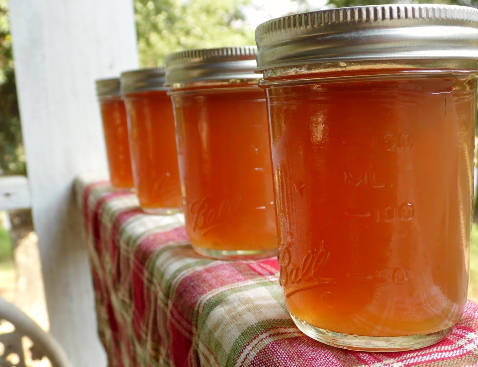 how to make homemade scuppernong wine