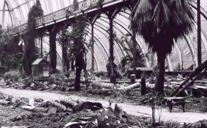 Ruinas del invernadero