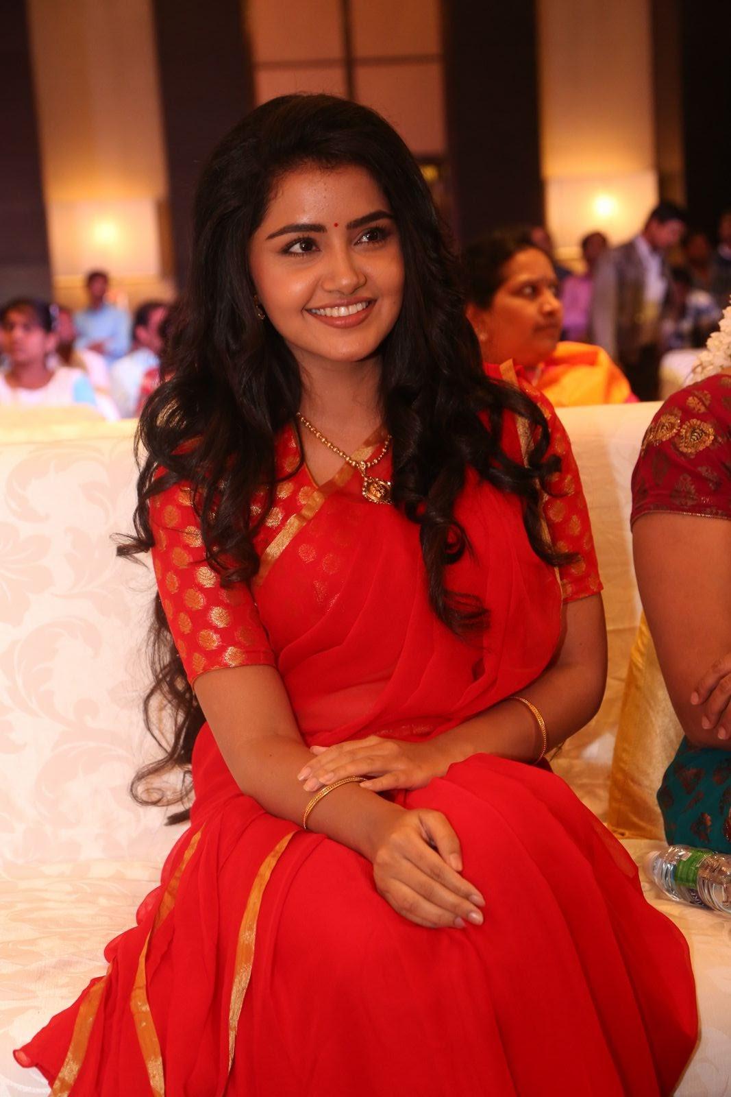 Anupama Parameswaran new cute photos-HQ-Photo-12